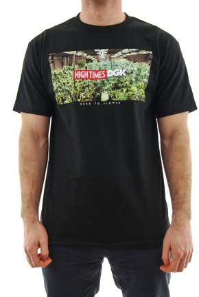Koszulka DGK x High Times - Grow Room black