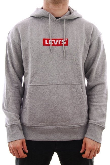 Bluza Levi's Skateboarding - Relaxed Graphic grey